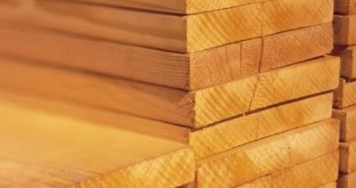 ¡ENTÉRATE!: El pino, un material ideal en la arquitectura sustentable