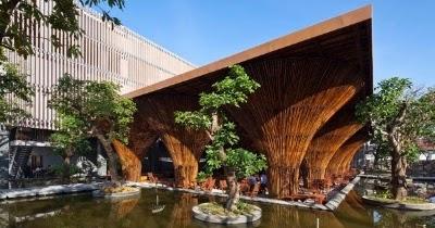 ¡IMPORTANTE!: Bambú, material económico y sustentable