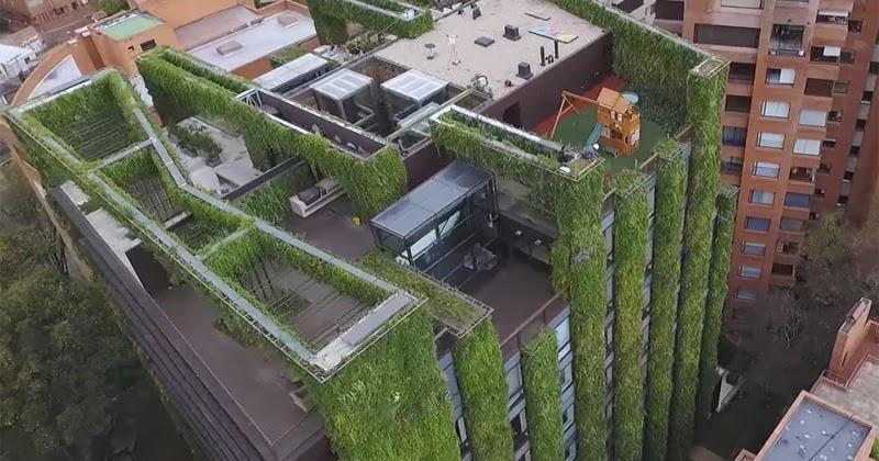 ¡IMPORTANTE!  Colombia posee el jardín vertical más grande de mundo
