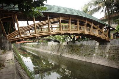 el bambu para las nuevas estructuras