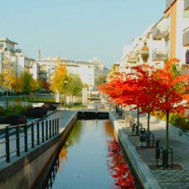 Armando Iachini: ¡ATENCIÓN! Uso racional del agua en las construcciones