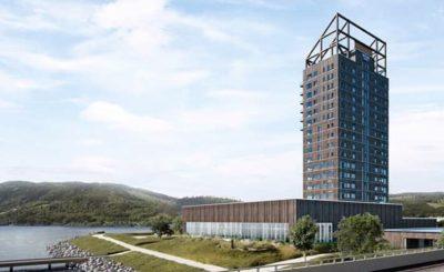 Armando Iachini - Rascacielos de madera